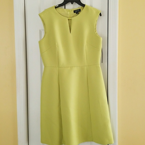 506c0d5c5e91 Tahari Woman Dresses | Brand New Lime Green Casual Dress | Poshmark